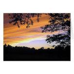 Silencio de la puesta del sol felicitaciones