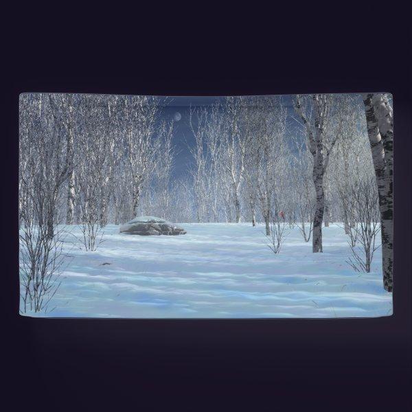 Silent Light Banner