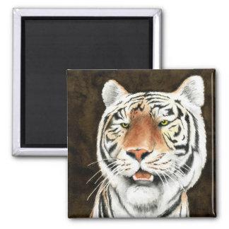 Silent Stalker - Tiger Magnet