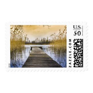 Silent Still River Lake Water Reeds Stamp