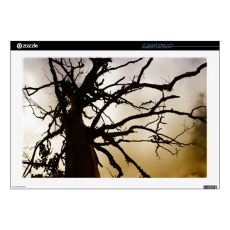 Silhouetee of tree without leaves laptop skin