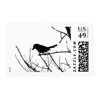Silhouette Black and White Catbird on Bare Branch Postage