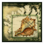 Silhouette Conch Shell Poster