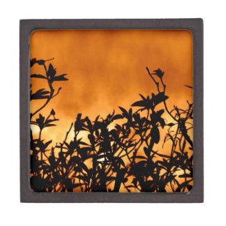Silhouette Flower Bush Premium Gift Box