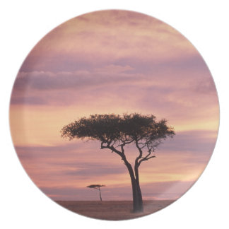 Silhouette image of acacia tree at sunrise dinner plate