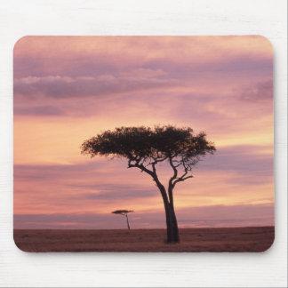 Silhouette image of acacia tree at sunrise mouse pad