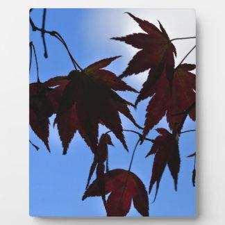 Silhouette Maples Plaque