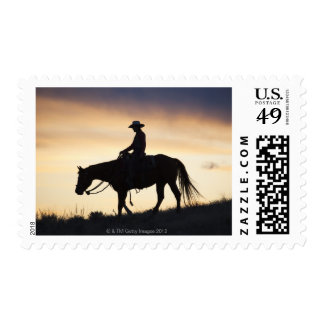 Silhouette of a Cowgirl on her horse against the Postage