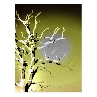 Silhouette of a Dying Tree Postcard