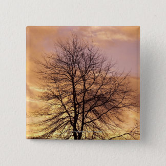 Silhouette of a Tree with Pink and Orange Sky Button