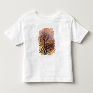 Silhouette of a Tree with Pink and Orange Sky Tee Shirt