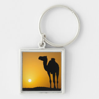 Silhouette of a wild camel at sunset keychain