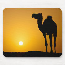 Silhouette of a wild camel at sunset mouse pad