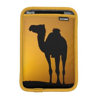 Silhouette of a wild camel at sunset sleeve for iPad mini