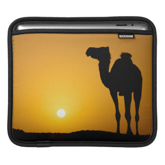 Silhouette of a wild camel at sunset sleeve for iPads
