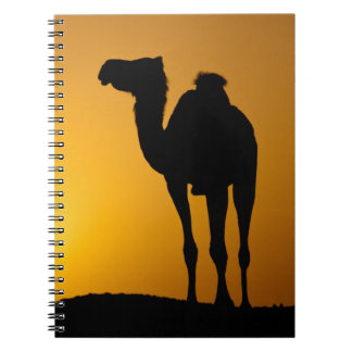 Silhouette of a wild camel at sunset spiral notebook