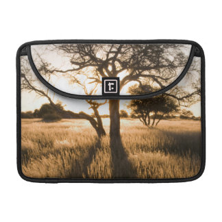 Silhouette Of Acacia Trees In Grass. Mariental MacBook Pro Sleeve