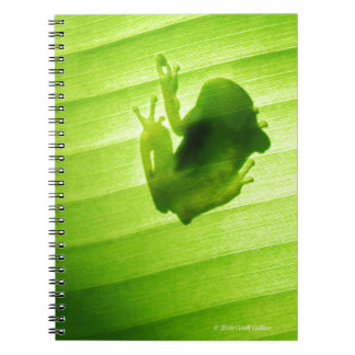 Silhouette of amagaeru notebook