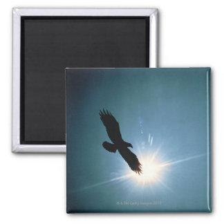 Silhouette of bald eagle flying in sky 2 inch square magnet