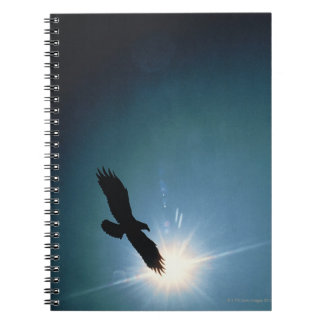 Silhouette of bald eagle flying in sky spiral note book