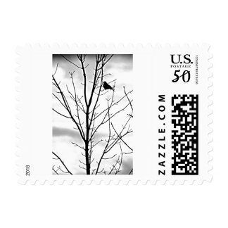 **SILHOUETTE OF BIRD IN TREE** U S POSTAGE STAMP