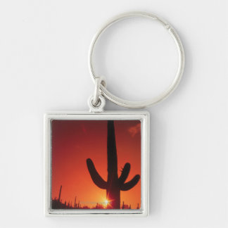Silhouette of cactus at dusk , Saguaro National Keychain