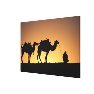Silhouette of camel caravan on the desert at 2 canvas print