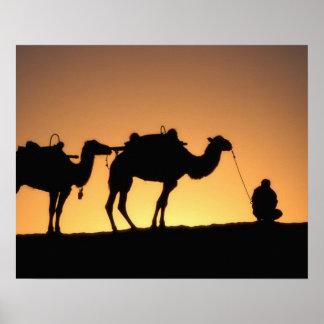 Silhouette of camel caravan on the desert at 2 poster