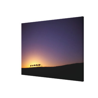 Silhouette of camel caravan on the desert at canvas print