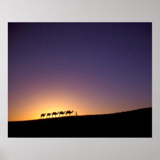 Silhouette of camel caravan on the desert at poster