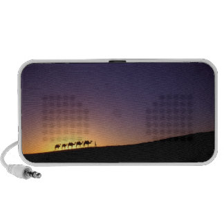 Silhouette of camel caravan on the desert at PC speakers