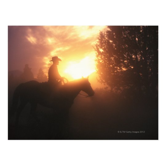 Silhouette of cowboy on a horse postcard