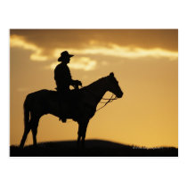 Silhouette of cowboy on horseback at sunset or postcard
