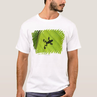 Silhouette of frog through banana leaf T-Shirt