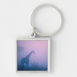 Silhouette Of Giraffe (Giraffa Camelopardalis) Keychain