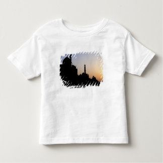 Silhouette of The Taj Mahal at sunset, Agra, Toddler T-shirt