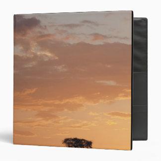 Silhouette of tree on plain, Masai Mara Vinyl Binder