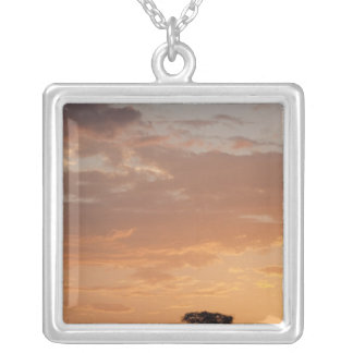 Silhouette of tree on plain, Masai Mara Square Pendant Necklace