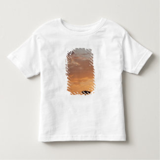 Silhouette of tree on plain, Masai Mara Toddler T-shirt