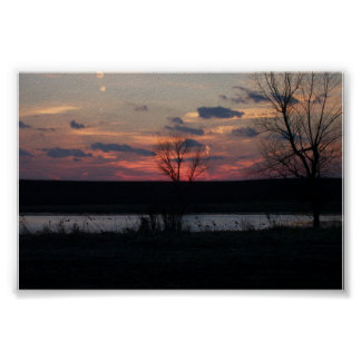 Silhouette of trees and ducks posters
