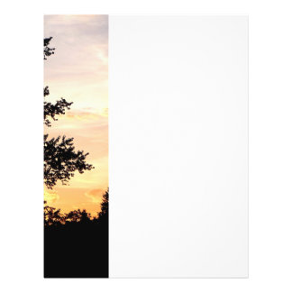 Silhouette of Trees at Sunset Flyer