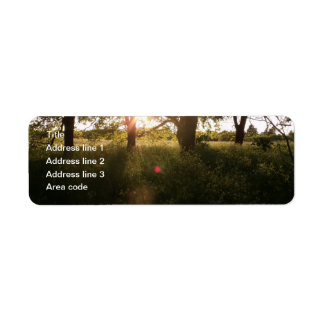 Silhouette Trees And Sunlight Personalized Wedding Return Address Label