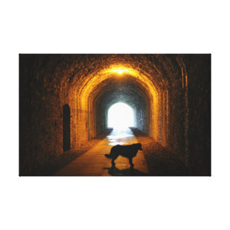 Silhouetted dog tunnel canvas print