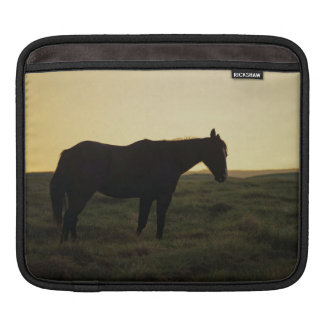 Silhouetted Horse Sleeve For iPads