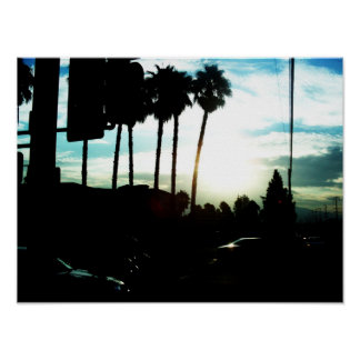 Silhouetted Palm Trees In The Morning Poster