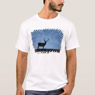 Silhouetted Red Deer Stag at Night T-Shirt