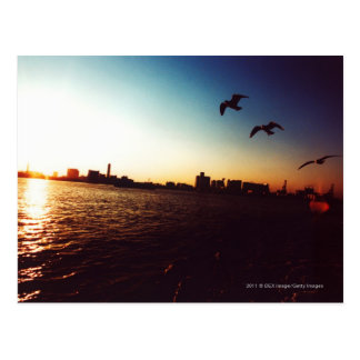 Silhouetted Tokyo Bay skyline at sunset Postcards