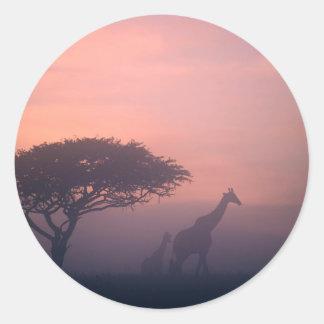 Silhouettes Of Giraffes Classic Round Sticker