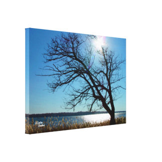 Silhouettes tree lake Stretched Canvas Print