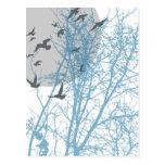 silhouscreen los pájaros postales